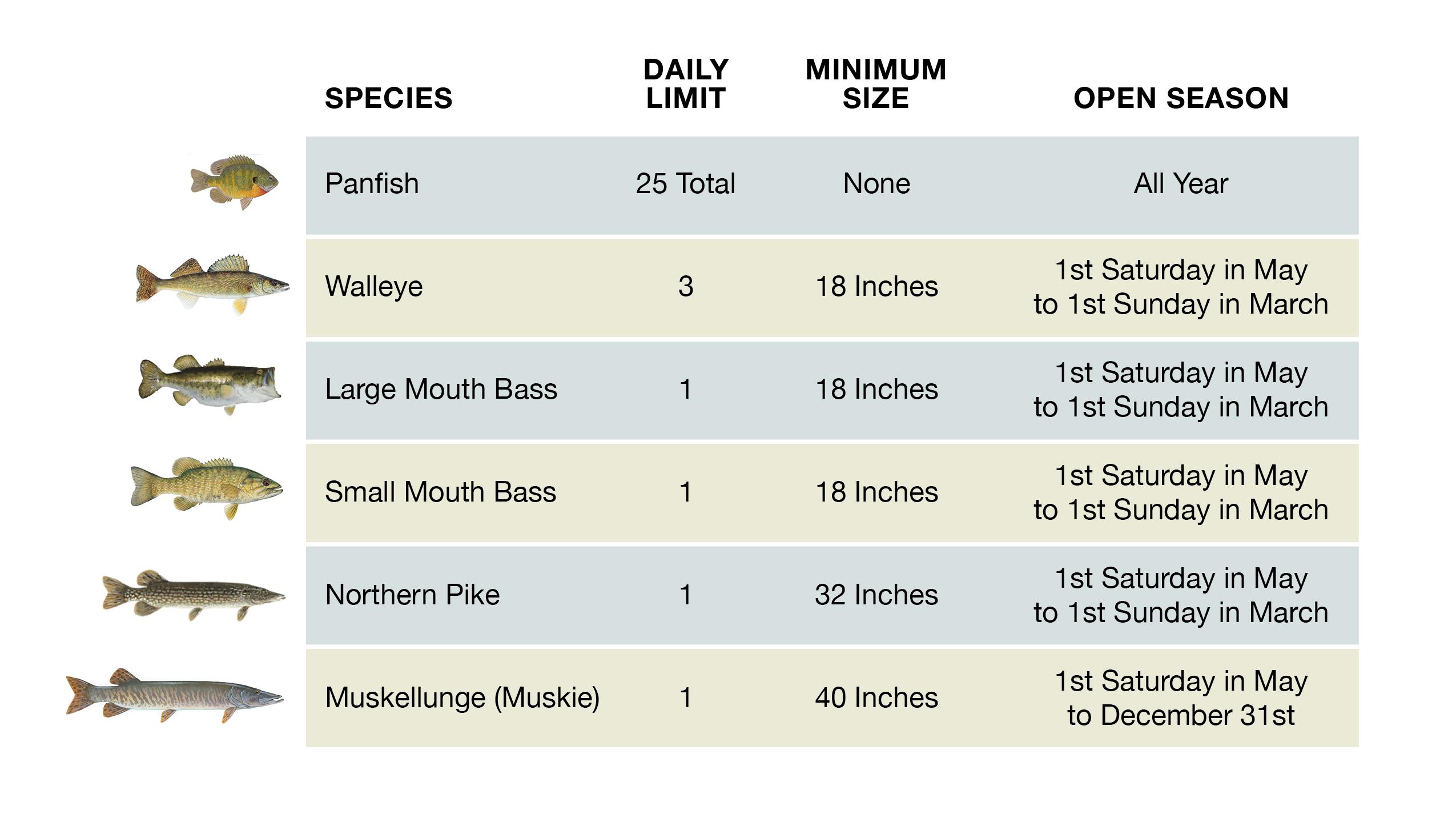 Delavan Lake Fishing Regulations